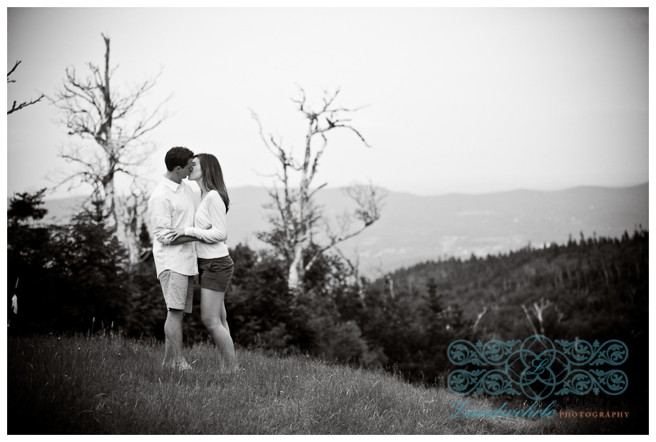 Kathleen Landwehrle Presents Emily and Jeff's Engagement